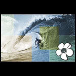 SURFER WAVE HIBISCUS MOSAIC