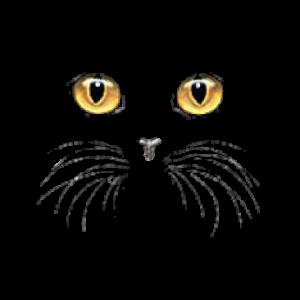 CAT FACE-YELLOW EYES