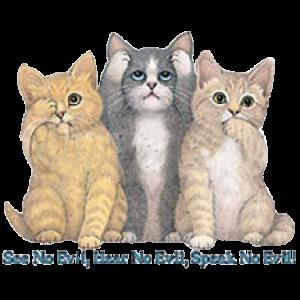 SEE NO EVIL CATS