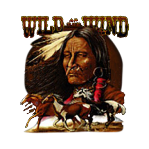 WILD AS THE WIND-INDIAN