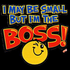MAY BE SMALL BOSS   32