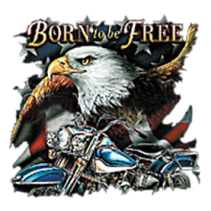 BORN TO BE FREE-MOTORCYCLE