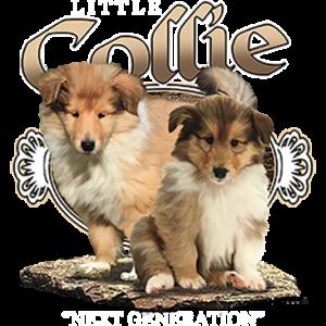 LITTLE COLLIE NEXT GENERATION