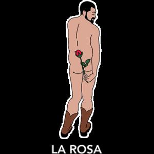 LA ROSA - MAN HOLDING ROSE