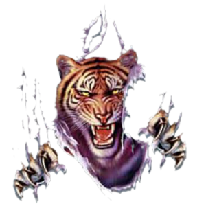 RIP OUT TIGER
