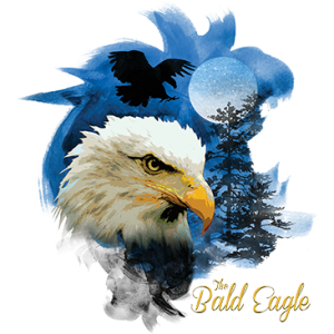 BIRDS OF PREY BALD EAGLE