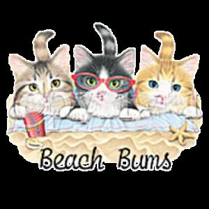 BEACH BUMS-KITTENS(F) 11