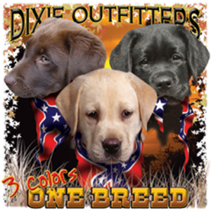 3 COLORS ONE BREED