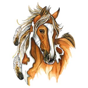 INDIAN HORSE      20