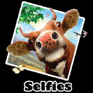 SELFIE COW