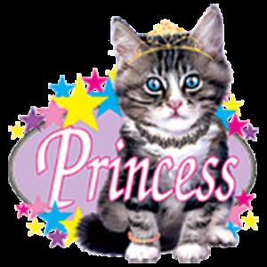PRINCESS KITTY (Y)