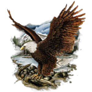 BALD EAGLE MOUNTAIN