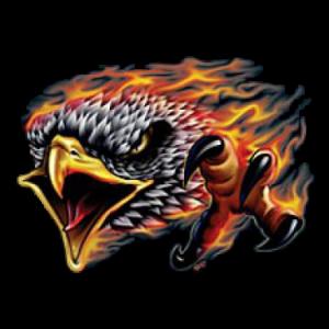 FLAMING EAGLE    28