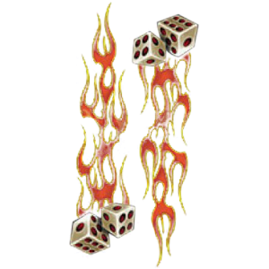 FLAMING DICE~SLEEVE  16