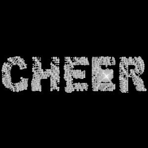 CHEER ZEBRA RHINESTONES