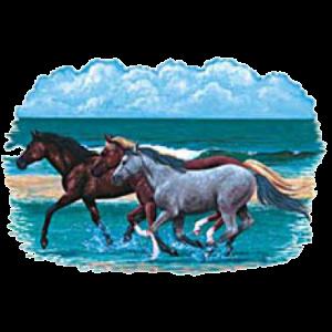 THREE HORSES/BEACH (Y) 32