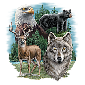 EAGLE, BEAR, DEER & WOLF   37