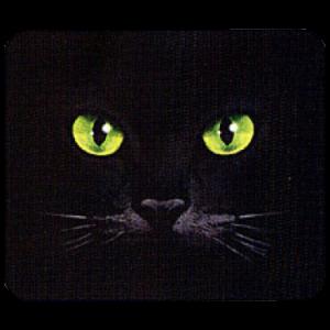 EYES-BLACK CAT