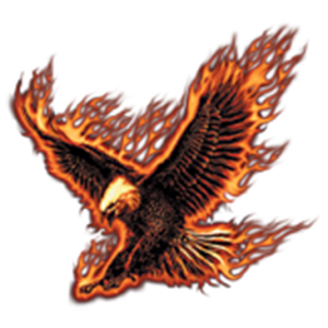 FLYING FIRE EAGLE