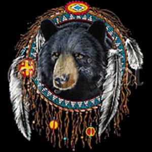 BEAR DREAMCATCHER  12