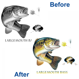 LARGEMOUTH BASS SOLAR TRANS