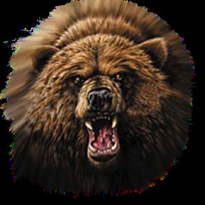 ATTACKING BEAR        11