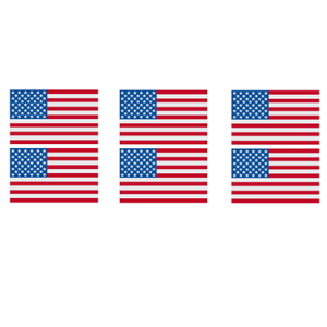 USA FLAG GANG SHEET (6pcs)