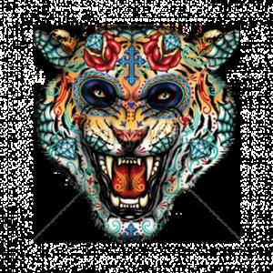 WILD CAT SKULL