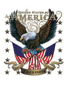 AMERICAN EAGLE LET FREEDOM REIGN