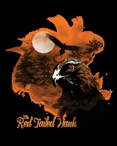 BIRDS OF PREY RED TAIL HAWK