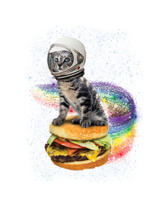 RAINBOW BURGER CAT