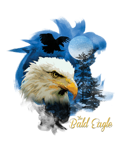 BIRDS OF PREY BALD EAGLE