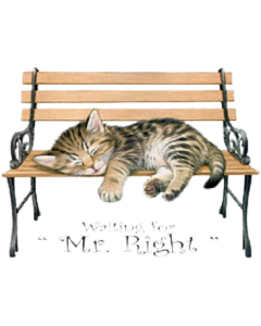 MR. RIGHT CAT NAPPING   14