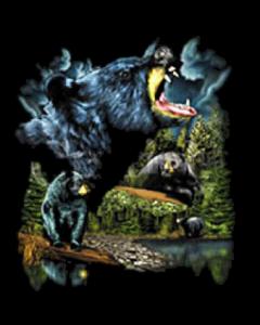 BEAR COLLAGE  12