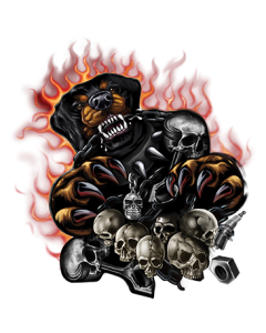 ROTTWEILER ATTACKING - FLAMES