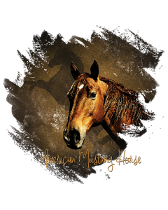AMERICAN MUSTANG HORSE