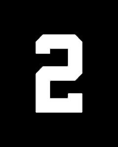 "6"" NUMBER 2- WHITE (warm peel)"