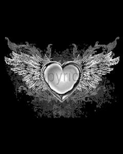 HEART WINGS      20