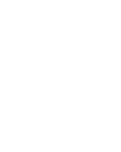 AMERICA THE FEW, PROUD, BRAVE