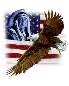 INDIAN U.S. FLAG & EAGLE