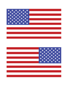 FLAG SLEEVE - PKT -(2) TWO PARTS -LEFT & RIGHT FACING FLAG