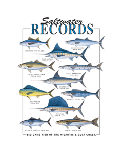 SALTWATER RECORDS