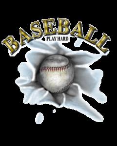 BASEBALL/PLAY HARD  21