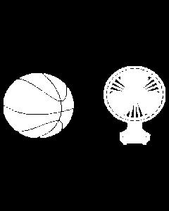 BASKETBALL FAN