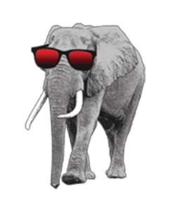 ELEPHANT WITH SUNGLASSES